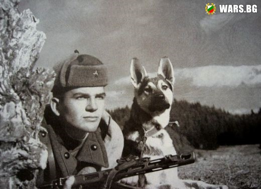 Спомени от соца: Медал и месец отпуска за всеки граничар, застрелял нарушител на границата