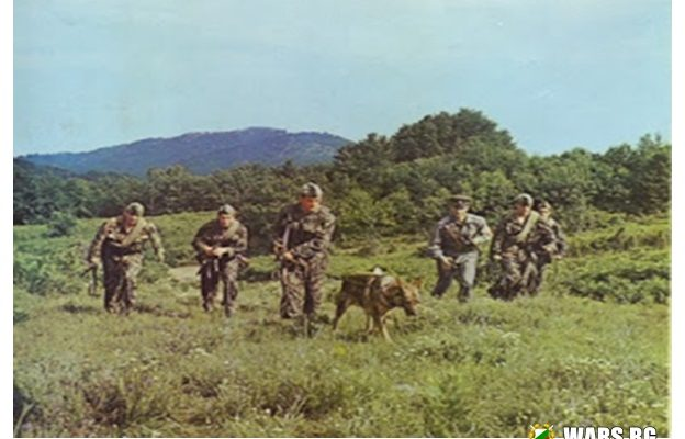 """За българските граници и Гранични войски в края на """"социалистическата епоха"""""""