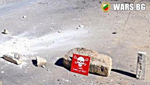 Ройтерс: Експерти разследват в Сирия Стефан Пройнов